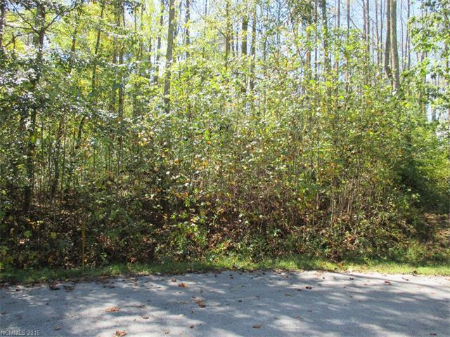 69 N Ridgeview Hill Drive #49, Hendersonville, NC 28792 (#3180132) :: Stephen Cooley Real Estate Group