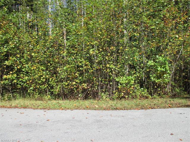 Lot 57 N Ridgeview Hill Drive #57, Hendersonville, NC 28792 (#3180143) :: Rinehart Realty