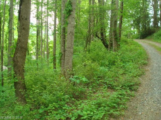 8 Eldorado Trail, Waynesville, NC 28786 (#3181434) :: Exit Mountain Realty