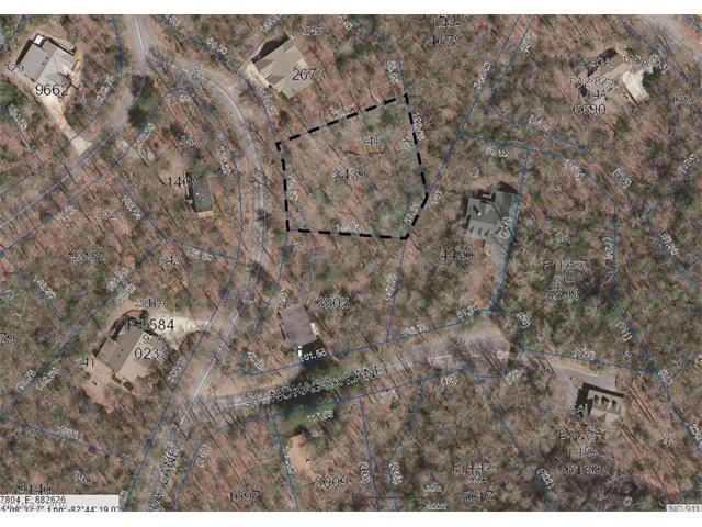 TBD Salola Lane L346/U2, Brevard, NC 28712 (#3182336) :: Exit Mountain Realty
