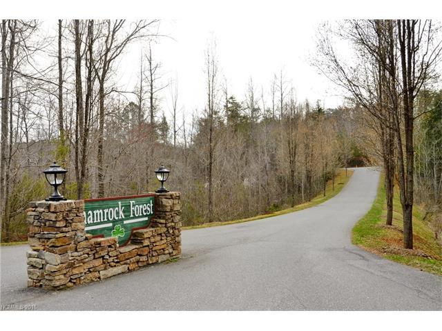00 Dunigan Drive Lot 51, Columbus, NC 28722 (#3182398) :: Stephen Cooley Real Estate Group