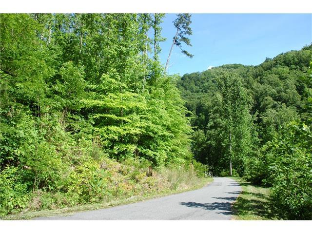 72 Applewood Lane, Weaverville, NC 28787 (#3182984) :: Leigh Brown and Associates with RE/MAX Executive Realty