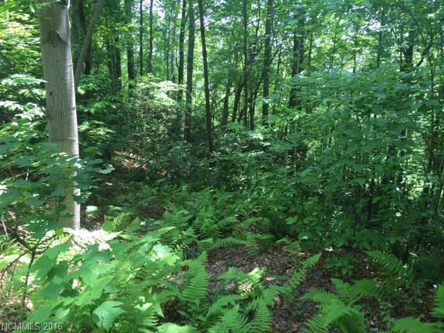 Lot 52 Gardner Lane #52, Pisgah Forest, NC 28768 (#3183129) :: Team Southline