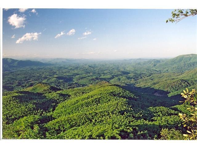 93 High Cliffs Trail #30, Black Mountain, NC 28711 (#3183618) :: Rinehart Realty