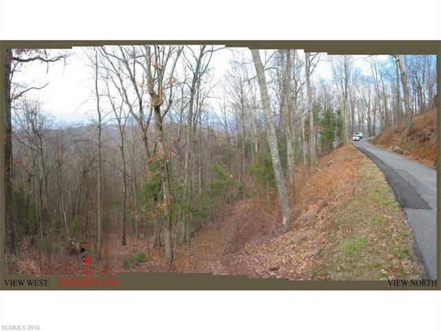 65 Skycliff Drive, Asheville, NC 28804 (#3183930) :: Team Southline