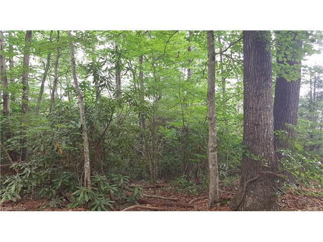 0 Willow Lake Drive #17, Hendersonville, NC 28792 (#3185106) :: Puffer Properties
