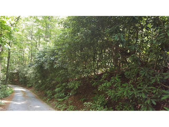 0 Willow Lake Drive #25, Hendersonville, NC 28792 (#3185131) :: Puffer Properties