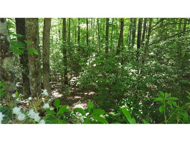 21 Sequoyah Woods Drive #21, Brevard, NC 28712 (#3185424) :: Odell Realty Group