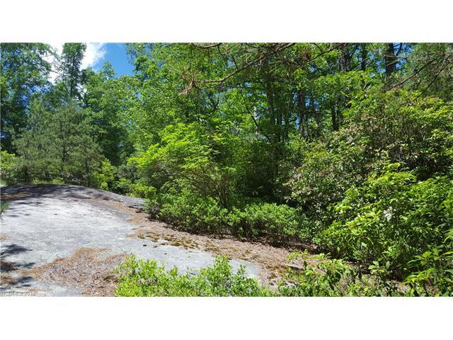 16 Sequoyah Woods Drive #16, Brevard, NC 28712 (#3185575) :: Odell Realty Group