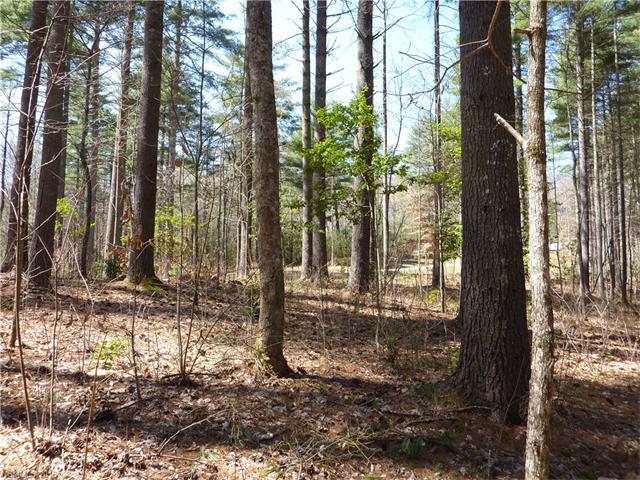 41 Mountain Brook Trail #41, Brevard, NC 28712 (#3188073) :: Mossy Oak Properties Land and Luxury