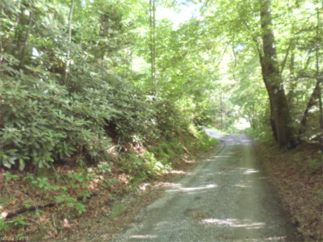 Lot 10 Penny Lane #10, Waynesville, NC 28785 (#3192056) :: LePage Johnson Realty Group, LLC