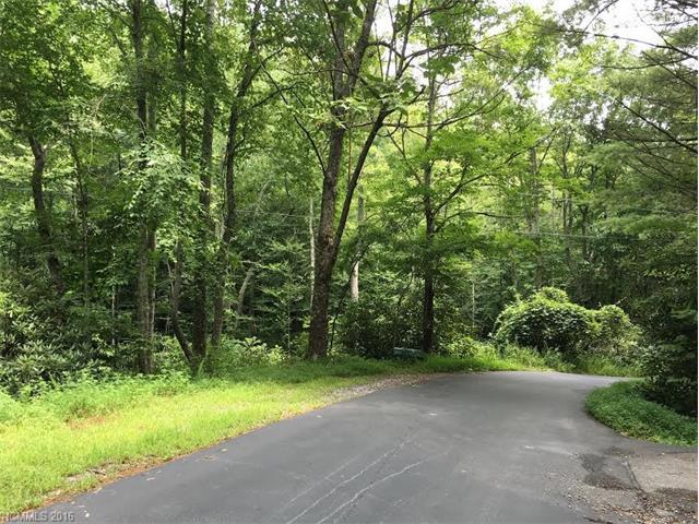 95 Merrills Chase Road D, Asheville, NC 28803 (#3192736) :: Puffer Properties
