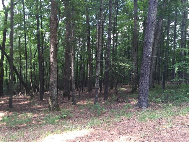 5 Parkway Crescent Drive, Arden, NC 28704 (#3193174) :: Caulder Realty and Land Co.