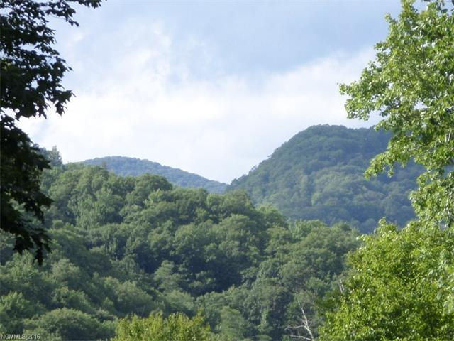 56 Jonathan Trail #56, Maggie Valley, NC 28751 (#3194322) :: LePage Johnson Realty Group, LLC