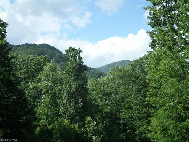 104 Tenderfoot Trail #104, Maggie Valley, NC 28751 (#3195284) :: LePage Johnson Realty Group, LLC