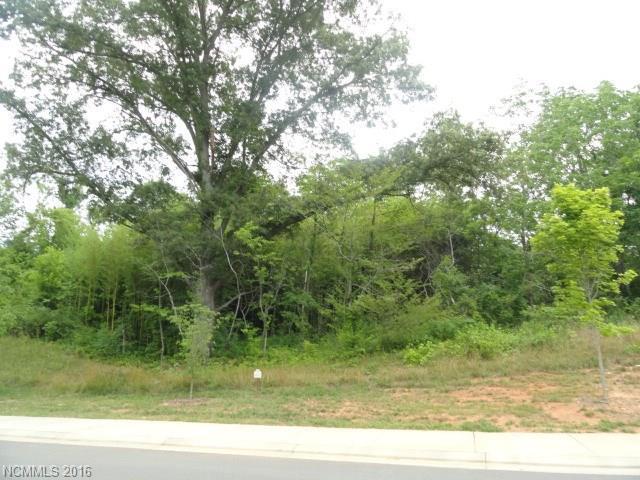 15 Versailles Lane #15, Asheville, NC 28804 (#3195933) :: MECA Realty, LLC