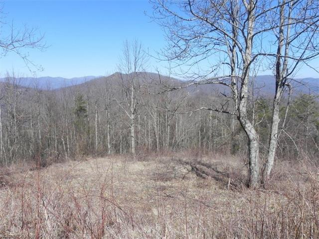 Lot 337 Ebby Ridge, Fairview, NC 28730 (#3195952) :: Exit Mountain Realty