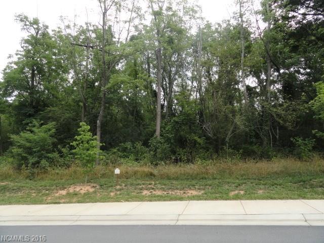 9 Versailles Lane #16, Asheville, NC 28804 (#3195972) :: MECA Realty, LLC