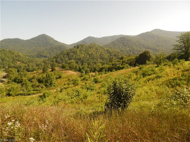 Lot 17 Leaning Maple Cove, Waynesville, NC 28786 (#3196655) :: Exit Mountain Realty