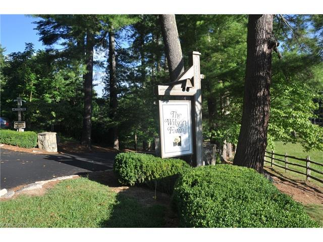 0 Winterberry Drive #53, Hendersonville, NC 28793 (#3201608) :: Odell Realty Group