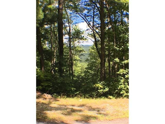 100 Black Bear Ridge Trail #9, Zirconia, NC 28790 (#3201802) :: Zanthia Hastings Team