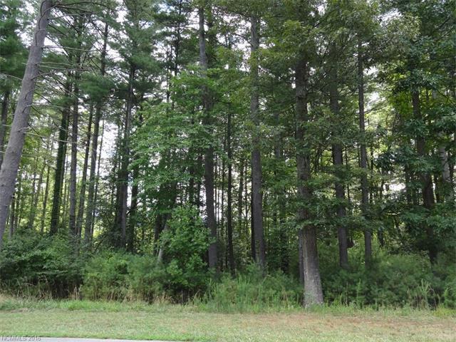 30 Cedar Hill Drive Lot # 16, Biltmore Forest, NC 28803 (#3202401) :: Exit Realty Vistas