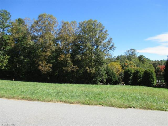 Lot 59 N Ridgeview Hill Drive #59, Hendersonville, NC 28792 (#3204794) :: Stephen Cooley Real Estate Group