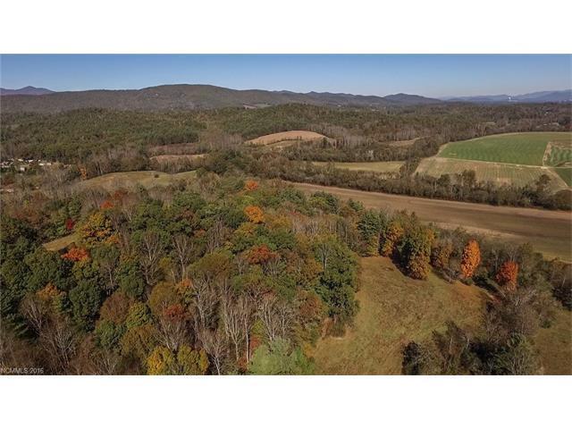 205 Mckinney Road, Etowah, NC 28729 (#3206778) :: Exit Mountain Realty
