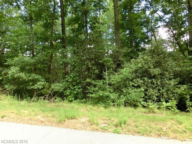 25 Garren View Drive #3, Fairview, NC 28730 (#3207224) :: Rinehart Realty