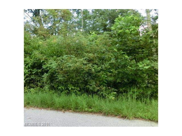 31 Garren View Drive #4, Fairview, NC 28730 (#3207229) :: Rinehart Realty
