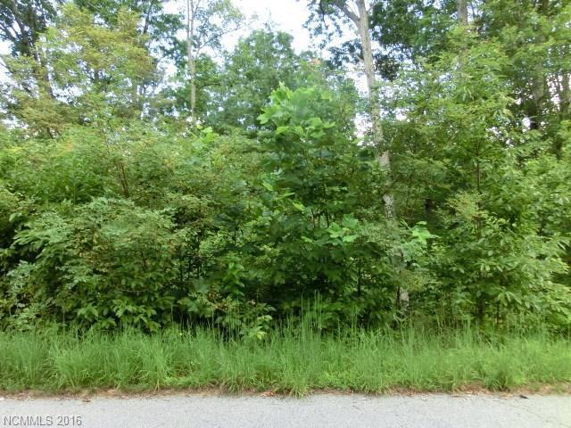 25 & 31 Garren View Drive 3 & 4, Fairview, NC 28730 (#3207236) :: Homes Charlotte