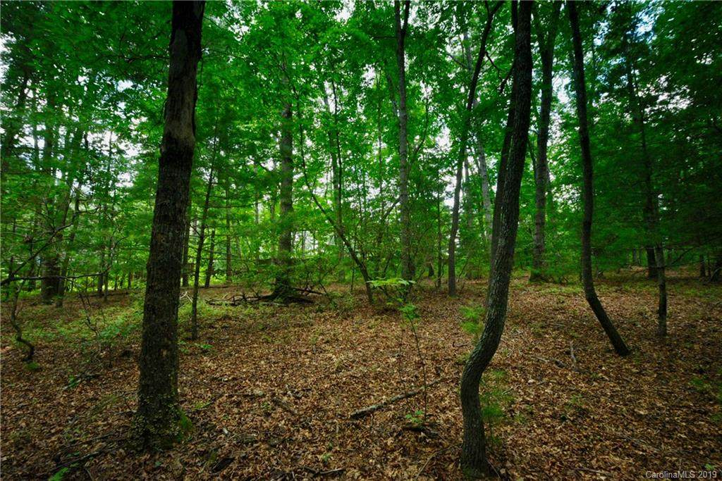 79 Running Creek Trail - Photo 1