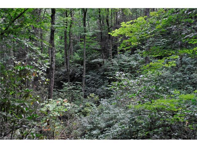 99999 N Deer Run Road N #4, Black Mountain, NC 28711 (#3209716) :: Rinehart Realty