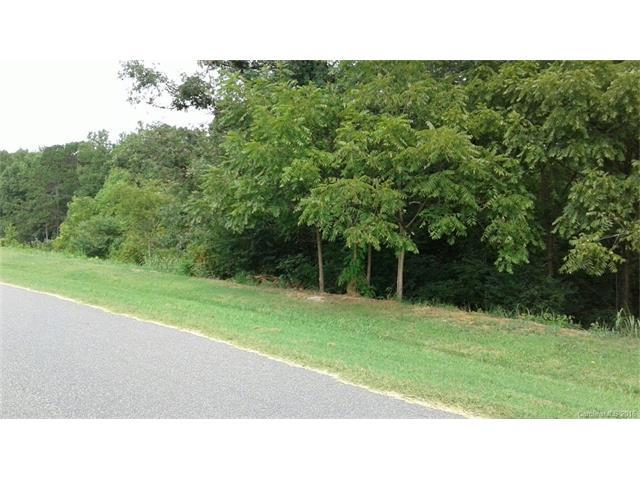 134 Savannah Crossing Drive, Mooresville, NC 28115 (#3210837) :: LePage Johnson Realty Group, LLC