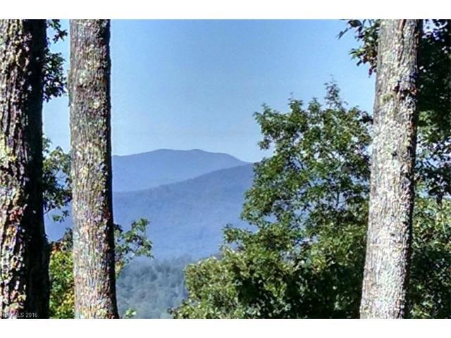218 Tagline Way #218, Sylva, NC 28779 (#3211805) :: Burton Real Estate Group