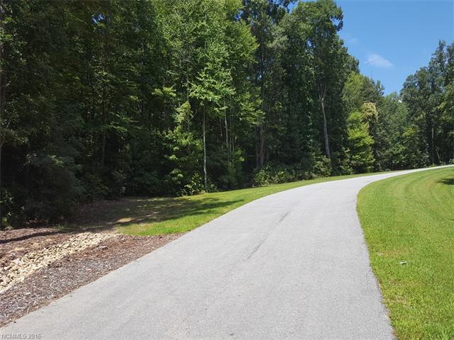 LOT 44 Autumn Sky Drive, Hendersonville, NC 28792 (#3212180) :: LePage Johnson Realty Group, LLC