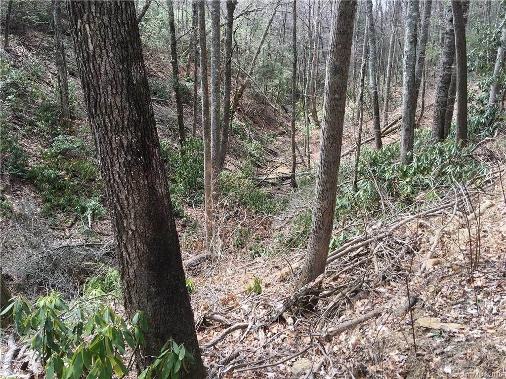 10 acres Old Wagon Trail - Photo 1
