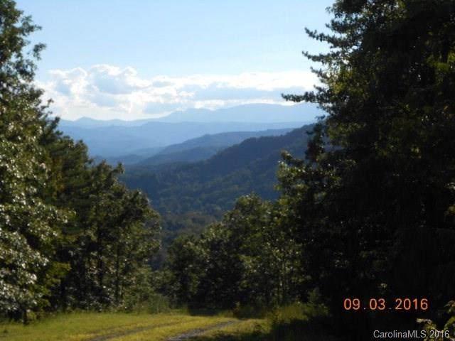 Lot 17 Fox Ridge - Photo 1