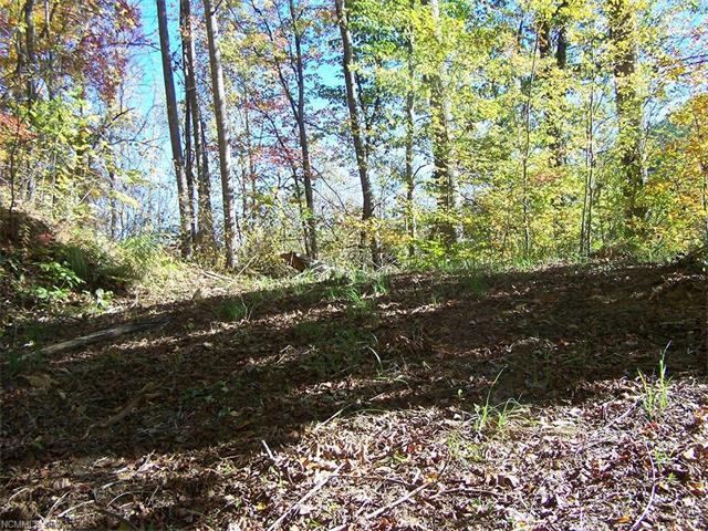 Lot 71 Running Deer Lane #71, Mars Hill, NC 28754 (#3215533) :: Puffer Properties