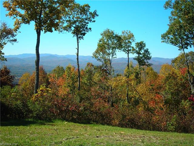 33 Cummings Ridge Trail #17, Hendersonville, NC 28739 (#3215812) :: Exit Mountain Realty