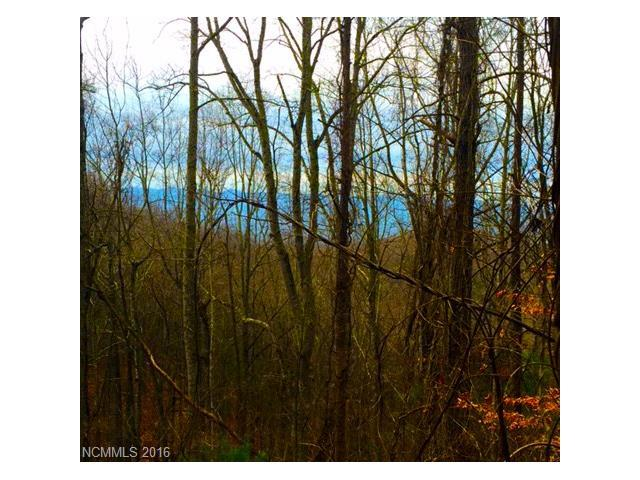 000 Elk Mountain Scenic Highway 1, 2, 3, Asheville, NC 28804 (#3218333) :: LePage Johnson Realty Group, LLC
