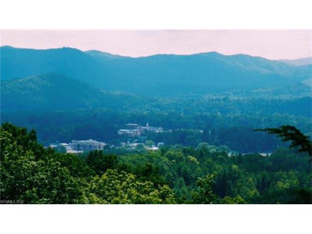 Parcel D Stone Drive D, Brevard, NC 28712 (#3218955) :: Puma & Associates Realty Inc.