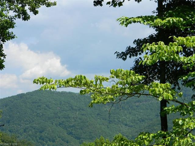 Lot 14 & 14A Blackberry Lane, Maggie Valley, NC 28751 (#3219382) :: Stephen Cooley Real Estate Group