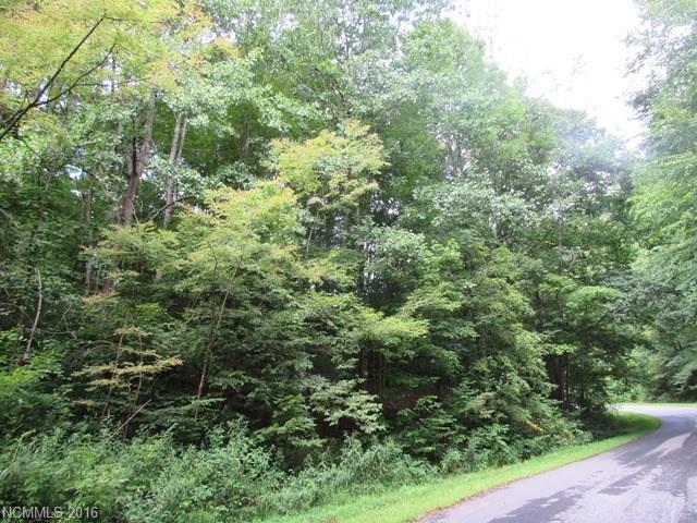 TBD Moonshine Mountain Road #12, Burnsville, NC 28714 (#3221078) :: Rinehart Realty