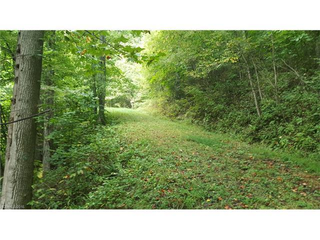 Lot 14 Big Boulder Ridge Road, Maggie Valley, NC 28751 (#3221295) :: Team Southline