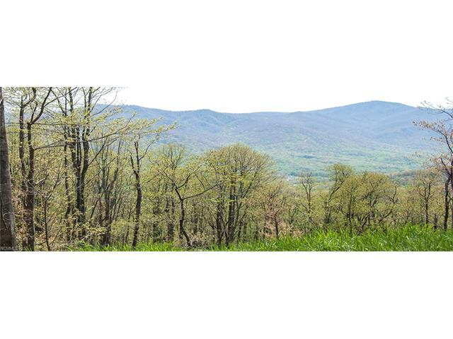 Lot 1 Big Boulder Ridge Road, Maggie Valley, NC 28751 (#3221318) :: Team Southline