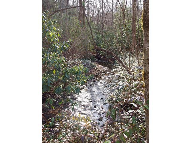 0 Steel Creek Road, Brevard, NC 28712 (#3224022) :: Rinehart Realty