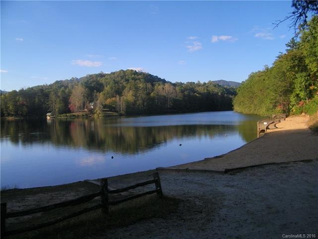 000 Redbird Drive #241, Lake Lure, NC 28746 (#3224035) :: Phoenix Realty of the Carolinas, LLC