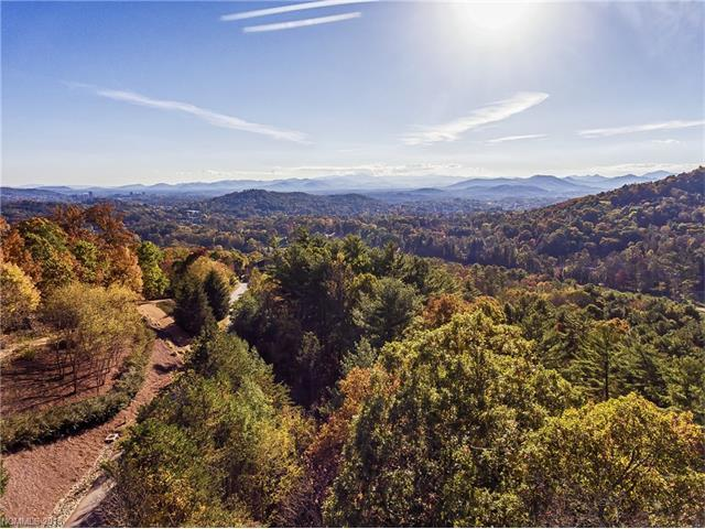 44 Elk Mountain Ridge, Asheville, NC 28804 (#3224735) :: LePage Johnson Realty Group, LLC