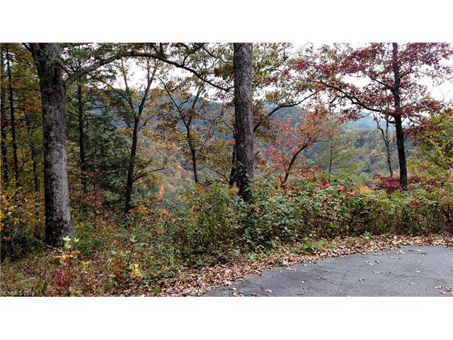 Lot 24 Bear River Lodge Trail, Marshall, NC 28753 (#3225087) :: Zanthia Hastings Team